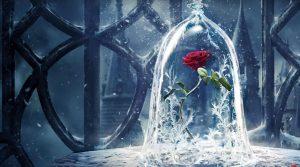 Surprenez vos chers avec la rose éternelle sous cloche