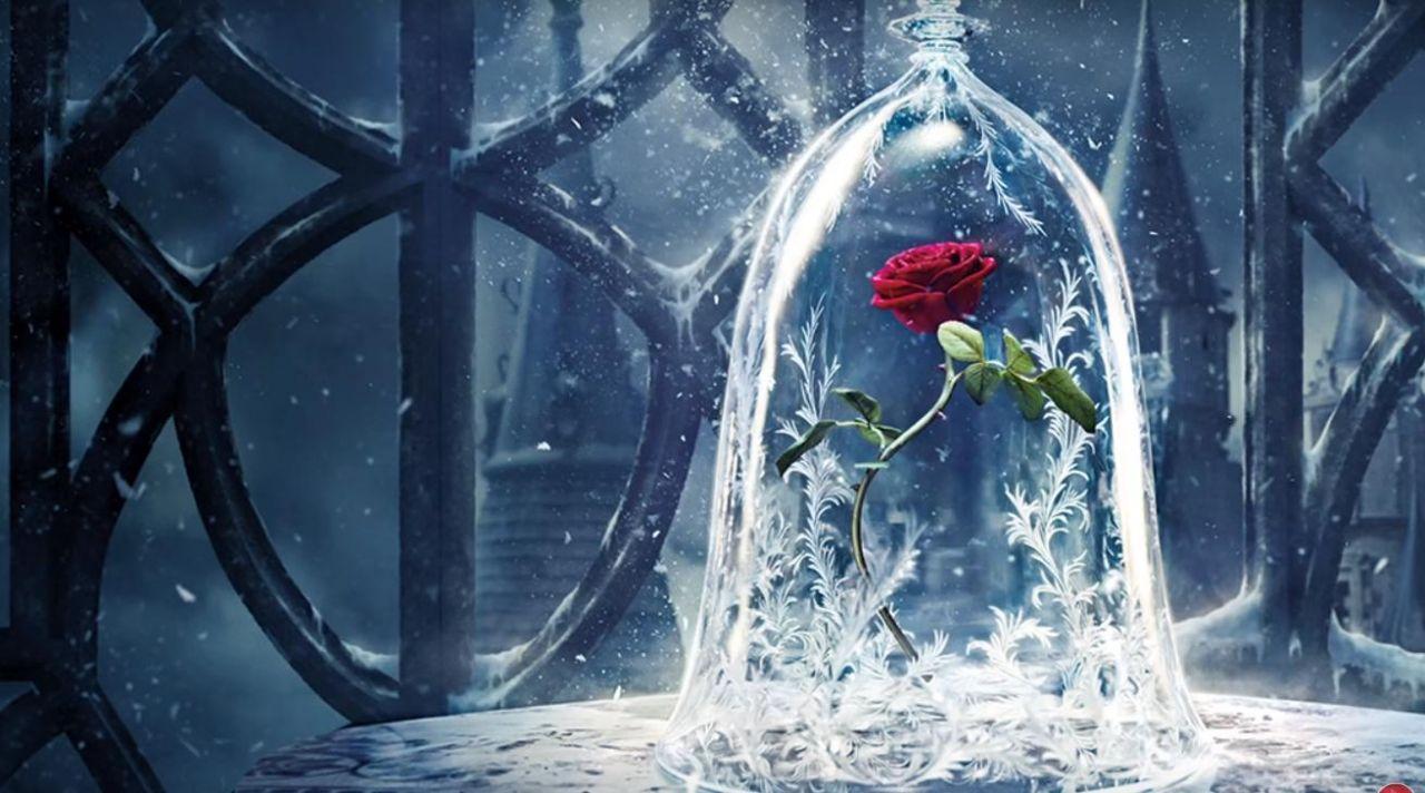 Surprenez Vos Chers Avec La Rose Eternelle Sous Cloche Lozzoo